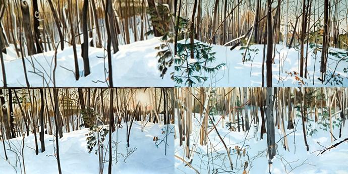 intro-woods-in-winter-eric-rosser