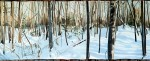 Woods in Winter thumbnail