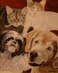 Pet Portrait thumbnail